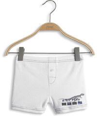 Esprit Short 100 % coton