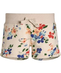 American Outfitters Shorts multicolour