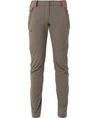 Salewa PUEZ Stoffhose brown