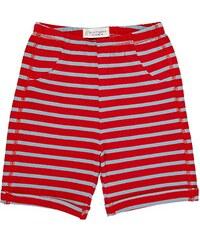 Sense Organics Baby - Jungen Short Fabo Shorts Aop