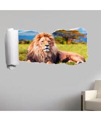 Lesara 3D-Tapeten-Sticker Raubkatze - Löwe