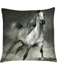 Polštář s motivem koně 07 Mybesthome 40x40 cm Varianta: Povlak na polštář, 40x40 cm