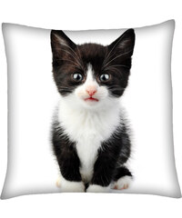 Polštář s motivem kočky 10, černobílá, Mybesthome 40x40 cm Varianta: Povlak na polštář, 40x40 cm