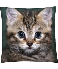 Polštář s motivem kočky 23, šedá, Mybesthome 40x40 cm Varianta: Povlak na polštář, 40x40 cm