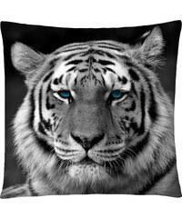 Polštář s motivem tygra 03 Mybesthome 40x40 cm Varianta: Povlak na polštář, 40x40 cm