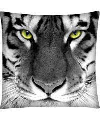 Polštář s motivem tygra 04 Mybesthome 40x40 cm Varianta: Povlak na polštář, 40x40 cm