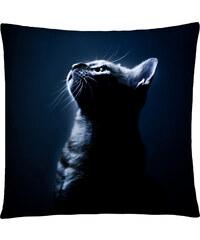Polštář s motivem kočky 25, modrá, Mybesthome 40x40 cm Varianta: Povlak na polštář, 40x40 cm