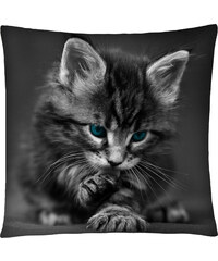 Polštář s motivem kočky 26, šedá, Mybesthome 40x40 cm Varianta: Povlak na polštář, 40x40 cm