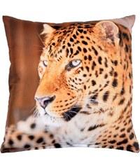 Polštář LEOPARD 102 MyBestHome 40x40cm fototisk 3D motiv leoparda Varianta: Povlak na polštář, 40x40 cm