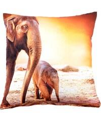 Polštář ELEPHANT oranžová MyBestHome 40x40cm fototisk 3D motiv sloni Varianta: Povlak na polštář, 40x40 cm