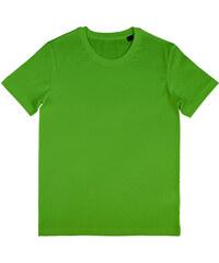 Pánské BIO tričko Wayne - Jarní zelená S