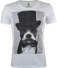 Majesté Couture Paris Dandy Dog - Tee Shirt - blanc
