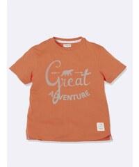 Cyrillus T-shirt - brique