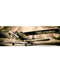Home affaire Deco Panel »Flugbereit«, 156/52 cm