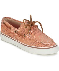 Sperry Top-Sider Chaussures BAHAMA FISH CIRCLE