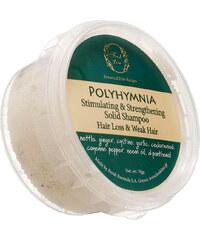 Fresh Line Polyhymnia festes Shampoo Haarshampoo 70 g