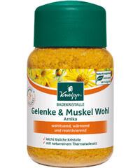 Kneipp Badekristalle Gelenke & Muskel Wohl Badezusatz 500 g