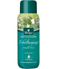 Kneipp Aroma-Pflegeschaumbad Erkältungszeit Badezusatz 400 ml