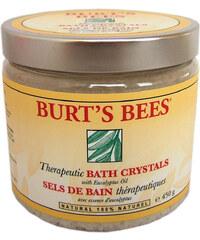 Burt's Bees Therapeutic Bath Crystals Badezusatz 450 g
