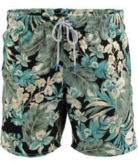 Pánské plavecké šortky O'Neill PM Paradise Shorts 603224-9900