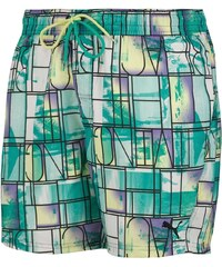 Pánské plavky Puma Wave Beach Shorts