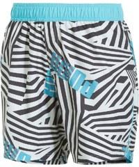 Pánské plavekcé šortky Puma Sportive Beach Shorts