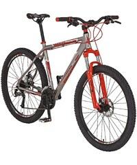 REX Mountainbike »Bergsteiger 6.01, (29 Zoll)« Inkl. POLAR Pulsuhr