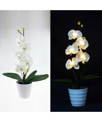 Lunio Living LED-Orchidee mit Blumentopf - Weiß