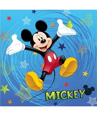 Jerry Fabrics Polštářek - Mickey 2016