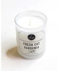 DW Home DW Home svíčka: Fresh Cut Gardenia