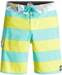 Pánské koupací šortky Quiksilver Everyday brigg 18 everyday brigg pool green 32