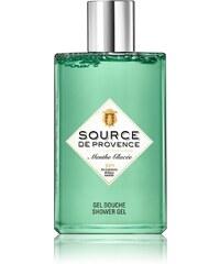 Source de Provence Menthe glacée - Gel douche - vert