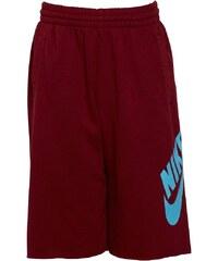 Nike SB Jungen Terry Logo Team Shorts Team Red