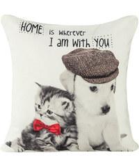 Polštář ANIMAL LOVE 03 bílá MyBestHome 40x40cm fototisk kočky a pejska Varianta: Povlak na polštář, 40x40 cm