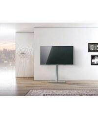 just-racks TV-Floorstand JRLTV600 VESA 200x200 bis 400x400 JUST-RACKS transparent