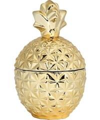 H&M Skleněná dóza ve tvaru ananasu