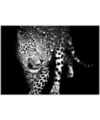 GRAHAM & BROWN Glasbild »Leopard«