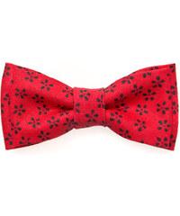 Avantgard Červený bavlněný chlapecký MINI motýlek s květovaným vzorem