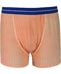 Dagobear Boxer - orange