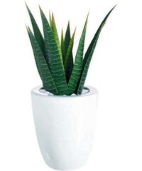 Váza TASTE ASA Selection bílá, 23,5 cm