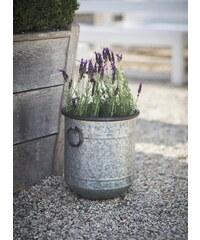 Garden Trading Plechový květináč Malmesbury Velikost S