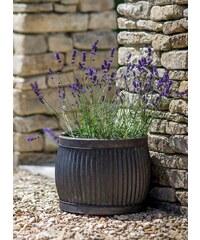 Garden Trading Plechový květináč Vence Shallow Větší