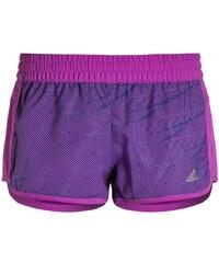 adidas Performance MARATHON kurze Sporthose shock purple/unity ink/matte silver