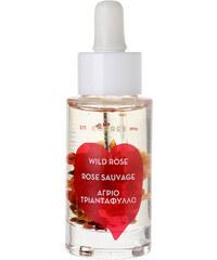 Korres natural products Wild Rose Gesichtsöl 30 ml