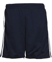 Pánské sportovní šortky - Tmavě modrá a bílá S