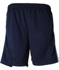 Pánské sportovní šortky - Světle a tmavě modrá S