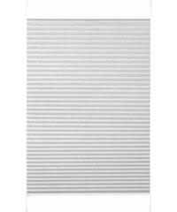 K-HOME Plissee-Faltenstore Klemmfix Pisa im Festmaß ohne Bohren Lichtschutz (1 Stck.) silberfarben 1 (H/B: 130/40 cm),10 (H/B: 210/70 cm),11 (H/B: 210/80 cm),2 (H/B: 130/50 cm),3 (H/B: 130/60 cm),4 (H