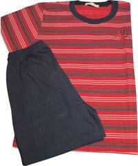 C-Lemon Pegas chlapecké pyžamo 9-10 let červená