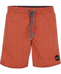 O'Neill Herren Badeshorts Chambers Swim Shorts