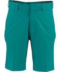 adidas Golf Herren Golfshorts Puremotion Stretch 3-Stripes